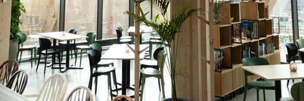 Incorporating Sustainability in Interior Design